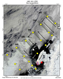 MODIS Terra sea ice image showing western Antarctic Peninsula region, PAL hydrographic stations (yellow circles) and cruise survey region. Black areas are open water. Black arrows show direction of travel. Triangles: physical oceanography moorings. Star: Rothera Base. Red arrow: Avian Island. Image constructed by ET Julian Race.