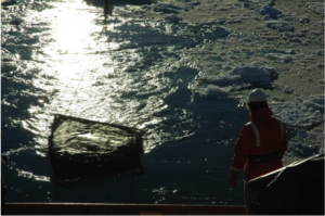 1-meter net tow in low ice conditions at stern of ship with Joe Cope looking on from the back deck.