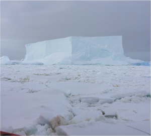 Figure 2. The anomalously large amount of sea ice  near the southern grid lines. We were stuck next to this massive iceberg for 12 hours!